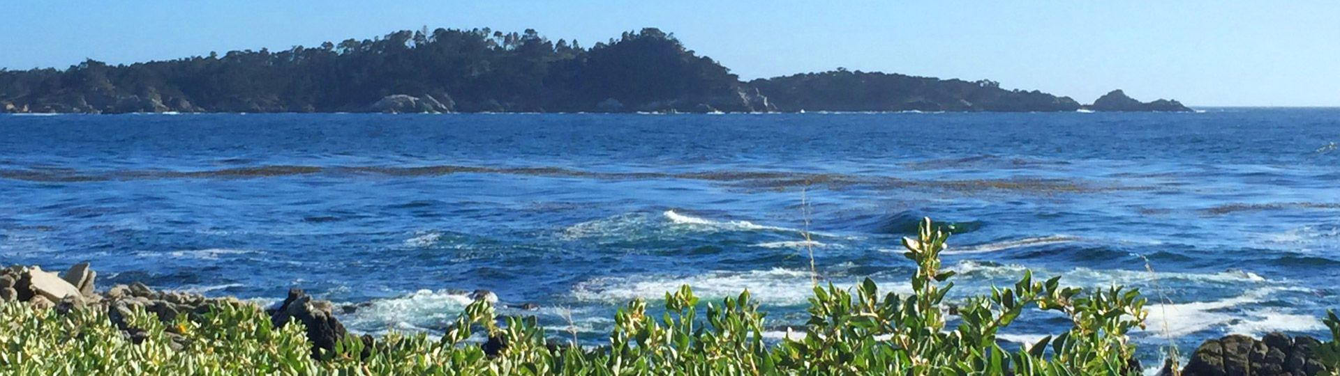 Ocean View from Carmel Bay to Point Lobos